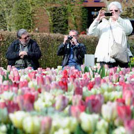 8 Procent meer buitenlandse bezoekers in Nederland