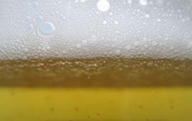 Adviesbureau: 'gemeenten niet klaar voor nieuwe Drank- en Horecawet