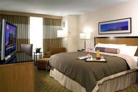 Hosta 2013: Kameromzet hotels daalt