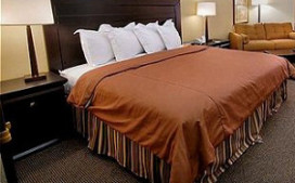 CBS: omzetstijging voor hotels in tweede kwartaal 2013
