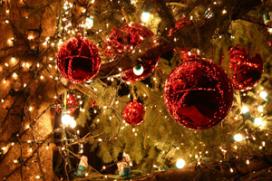 Kerstmaal voor 'rijke smaakpapillen' kost 154.000 euro