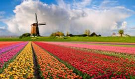 Toerist niet positief over culinair aanbod Nederland