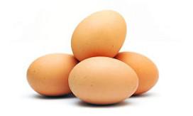 Wild Bean en IJscuypje stoppen met kooi-eieren