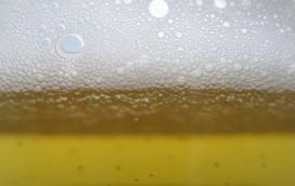 'Gezonde' sporthal zonder drank niet populair