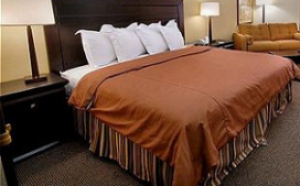Bezetting en omzet hotels loopt verder terug