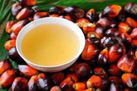 Gebruik duurzame palmolie naar 61 procent