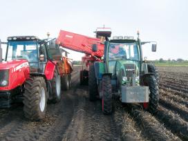 'Opbrengst aardappeloogst 2014 gemiddeld
