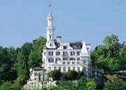 Popartiest wil kasteelhotel kopen