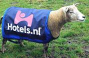 Burgemeester verbiedt reclameschapen Hotels.nl