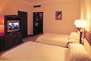 'Live seksshows op hotelkamer-tv in aantocht