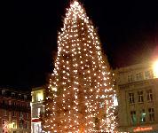 Bavaria-kerstboom bij Heineken-brouwerij geruïneerd