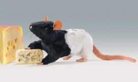 Rattenplaag in Zweedse restaurants