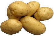 'De grote aardappelgekte slaat toe