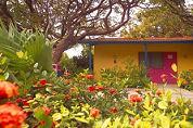 Hotelimpuls voor Bonaire