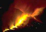 Bosbranden verjagen hotelgasten