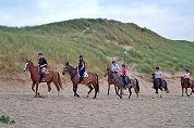 Recreatiepark voor mens en paard in de planning