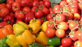 Samenwerking Vitam Catering en versketen