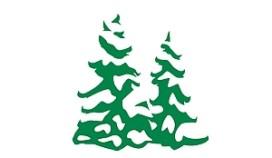 Horeca Vlaardingen doneert voor kerstboom