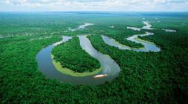 Topkok voorspelt opmars producten uit Amazonegebied