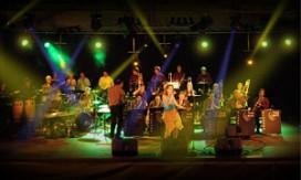 Buma wil artiesten zwaarder belasten