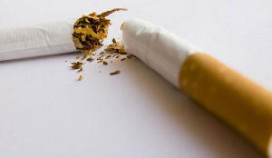 Rookverbod: kwart minder vaak naar café