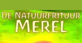 Biologisch patatje met veganistische mayo