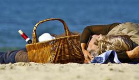 Primeur: picknickmanden op housefeest