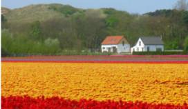Nederlander gaat bewuster op vakantie