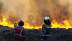 Duinbrand Bergen aan Zee laait weer op