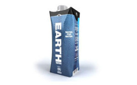 Domino's start met Earth Water