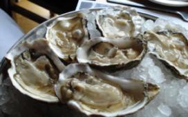 Zieke oester niet schadelijk voor restaurantgast