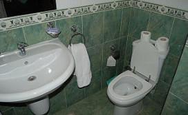 Vrouw herenigd met ring na verlies in toilet