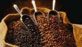 Slow coffee' culinaire trendwoord 2011