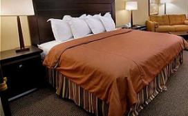 Nederlander geeft minder uit aan hotelkamer in eigen land
