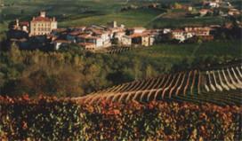 Catalaanse minister: 'Drink alleen wijn uit eigen streek
