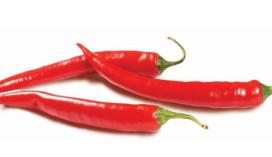 Wedstrijd 'heetste curry eten' pakt verkeerd uit