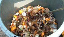 Cateraars onderzoeken voedselverspilling