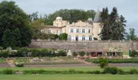 Franse topwijnen massaal vervalst