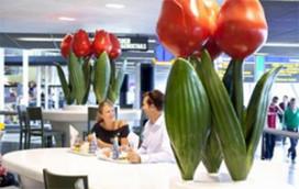 Twee nieuwe outlets HMSHost op Schiphol