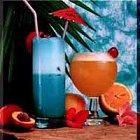 Tropische cocktails voor carnaval in Rotterdam: diverse recepten