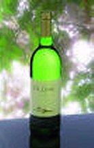 Witte-wijnsaus/Sauce vin blanc