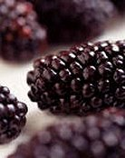 Vruchtencoulis