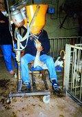 Rabobank weigert foie gras-producenten