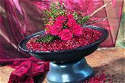 Grote schaal met cranberry's