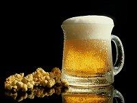 Alles over… Bier