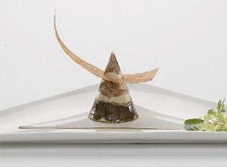 Terrine van kalfssukade en ganzenlever met een truffeldressing (Jilt Cazemier)