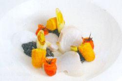 Kabeljauwlamellen met risotto, stokviskroketjes en tonkabonen-preischuim (Peter Lute)