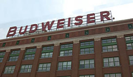 Budweiser voorlopig niet groots in Nederland