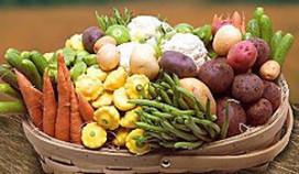 Nederlandse mini-groenten in Bocuse-finale