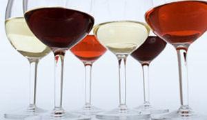Uitstekende wijnkaart 2012